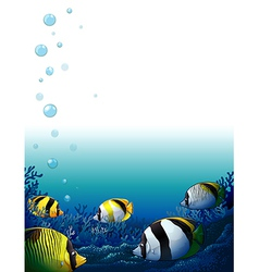 Fishes under the sea vector