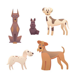 collection cute different type of dogs small and vector image vector image