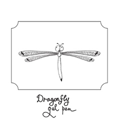 drawing dragonfly vector image vector image