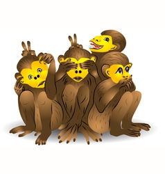 Three monkey vector