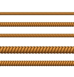 Climbing or nautical rope thin and thick vector image