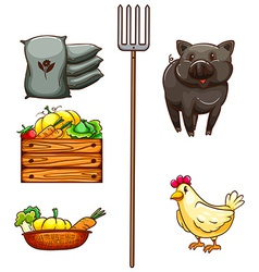 A group of things found at the farm vector image
