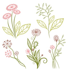Flowers meadow vector