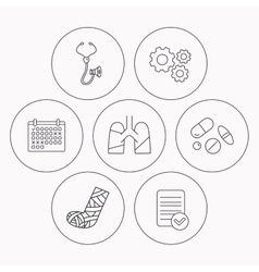 Broken foot lungs and medical pills icons vector