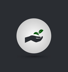 hand holding the plant vector image