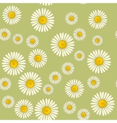 seamless pattern with chamomile on color vector image