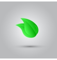 Eco icon with green leaf vector image