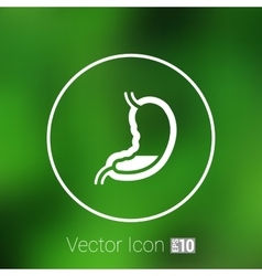 Human stomach icon human cross intestinal vector