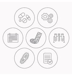 Broken foot bacteria and medical pills icons vector image