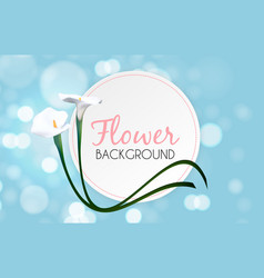 abstract floral background with calla flower vector image vector image