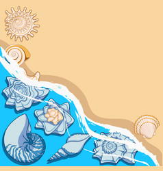 background with sea shells and surf vector image