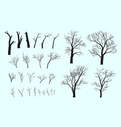 set of branches and tree vector image vector image