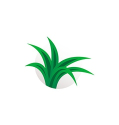 Simple aloe vera plant logo Herbal sign vector image