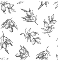 Seamless pattern with olive branches vector