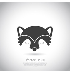 Racoon icon vector