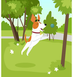 Cute jack russell terrier dog playing with ball in vector