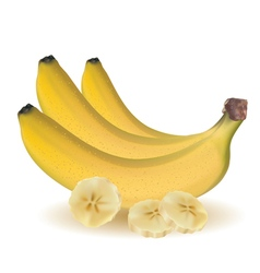 Bunch of ripe bananas and sliced bananas vector image vector image