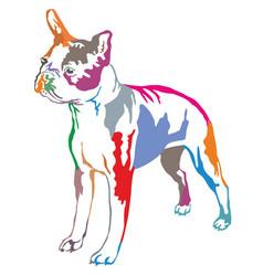 Colorful decorative standing portrait of boston vector