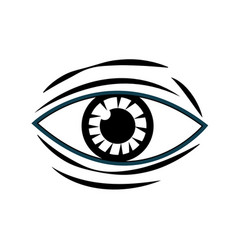 human eye vision optical design image vector image vector image