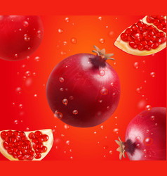 pomegranate and fresh seeds of pomegranates vector image vector image