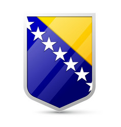 Coat of arms of Bosnia and Herzegovina vector image