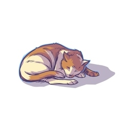 Spotted cat sleeping curled up vector