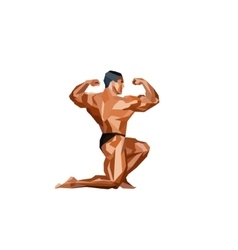Colored posing bodybuilder silhouette vector