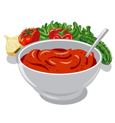 Tomato sauce with vegetables vector