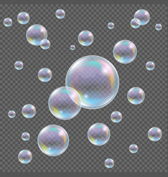 Realistic transparent soap bubbles with vector image