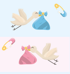 Beutiful storks with baby girl and boy inside of vector