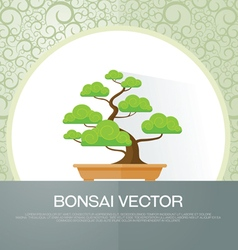 Bonsai plant vector