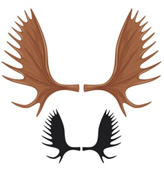 horns of moose vector image vector image