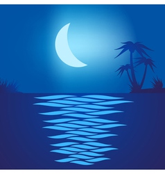 Tropical beach at night vector image vector image