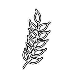 weath leafs isolated icon vector image vector image