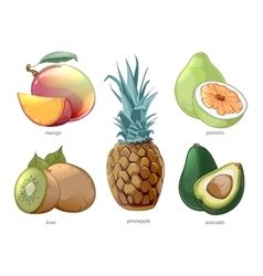 Cartoon exotic tropic fruits icons set vector