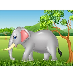Cute elephant mascot in the jungle vector