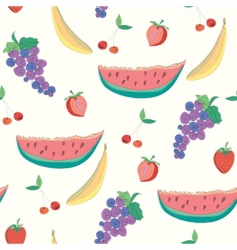 fruitssketch vector image vector image