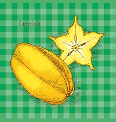 ripe yellow carambola vector image vector image