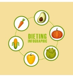 Dieting infographic presentation vector