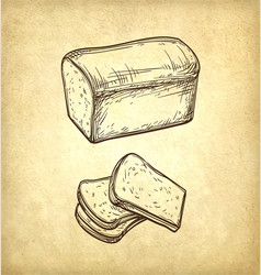Fresh toast bread vector