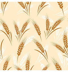 Wheat seamless vector