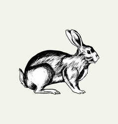 Black rabbit hand drawn vector