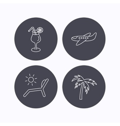 Airplane deck chair and cocktail icons vector image