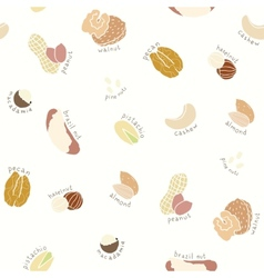 Different nuts pattern vector