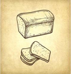 fresh toast bread vector image vector image
