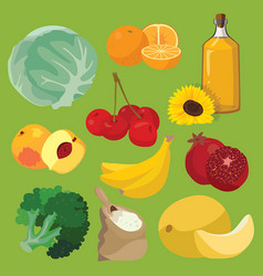 Oil fruit vegetables cereals berries vector