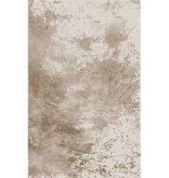 Grunge backgrund vector image vector image