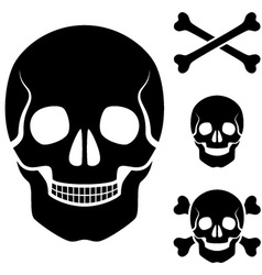 human skull cross bones symbol vector image vector image