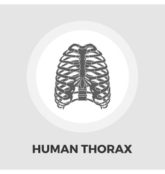 Human thorax flat icon vector image