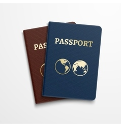 Passports international identification document vector